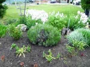 garden 120513